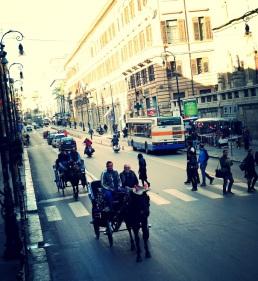Palermo 8