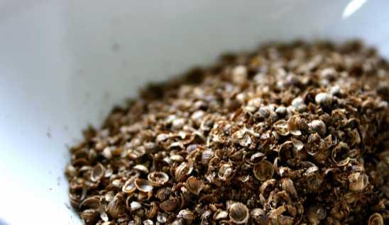 Chutney- Roughly chopped coriander