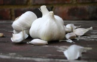 The Good Greeff- Fresh Garlic