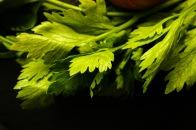 Green juice   Celery