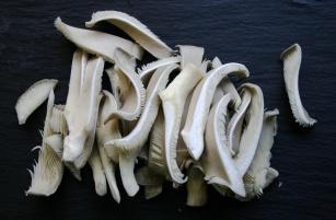 Biltong bowl #2 | 1cm slices oyster mushroom