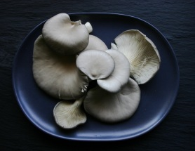 Biltong bowl #2 | Oyster mushrooms