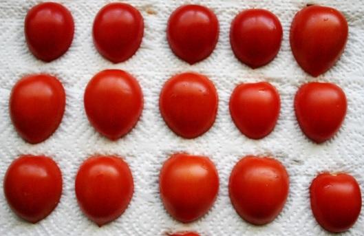 TheGoodGreeff mixed vegetable moussaka dehydrating tomatoes