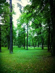 Peterhof Lower Park