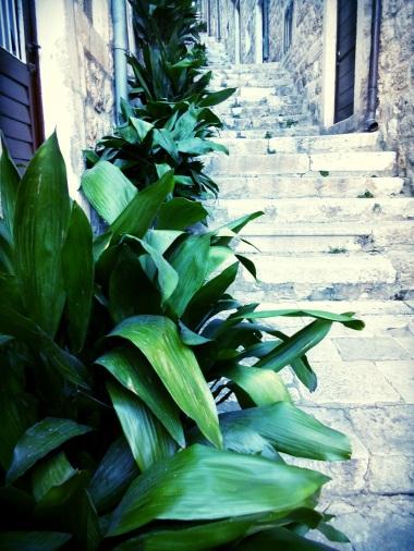 Hidden alleys and stairwells