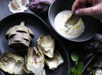 Dipping the soft, fleshy end of the artichoke